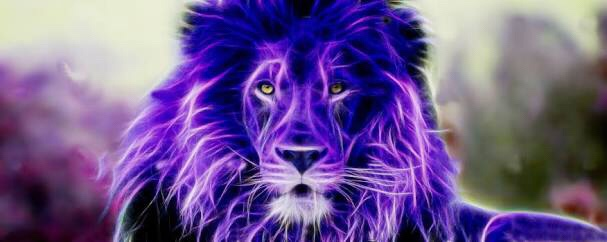 What can you learn from a purple lion?