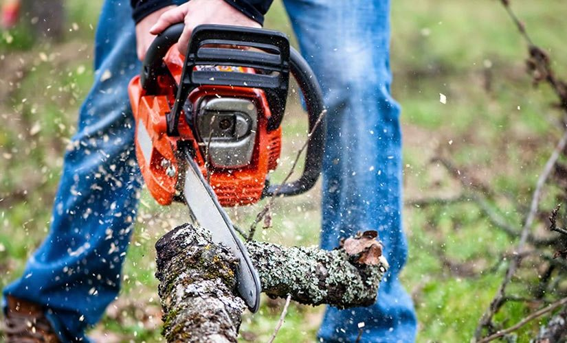 Can a chainsaw start a revolution?